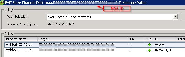 vm settings - NAA ID